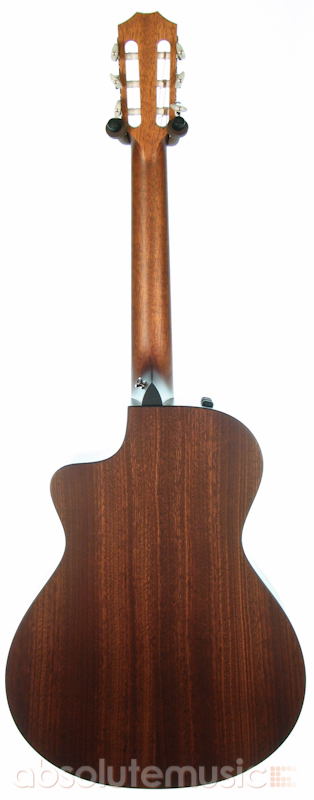 Taylor Nylon Acoustic 99